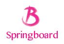 springboard-logo-mini